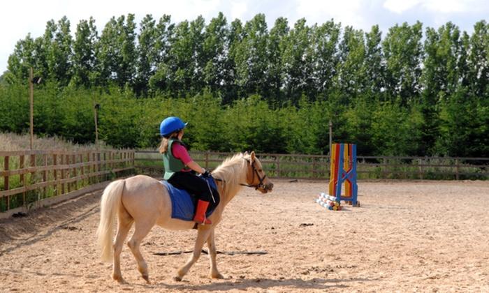 L'Epinette de Boisemont - Boisemont: 1 ou 2 balades découverte en poney de 30 minutes pour enfants de 2 à 5 ans dès 12 € à l'Epinette de Boisemont