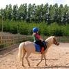Balade à poney pour les enfants