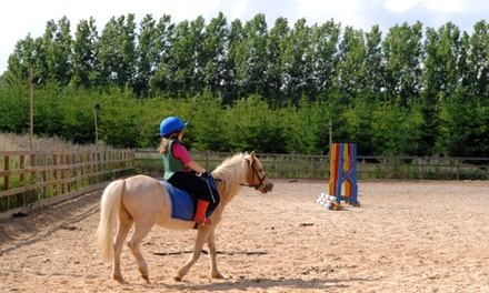 15-Minute Pony Rides with Take-Home Pictures for Two or Four from Silver Bit & Spur Farm (Up to 50% Off)