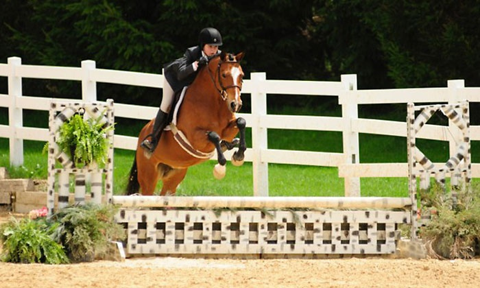 Hawks Landing - Hampshire: One or Two Private Horseback Riding Lessons for Ages 7 and Up at Hawks Landing (Up to 52% Off)