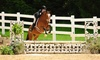 Hawks landing Stable - Hampshire: One or Two Private Horseback Riding Lessons for Ages 7 and Up at Hawks Landing (Up to 52% Off)