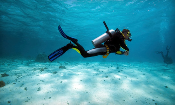 Carolina Dive Center - Northeast Raleigh: $252 for a Scuba-Certification Package with $50 Voucher Toward Snorkeling Set at Carolina Dive Center ($504 Value)