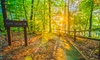 Laura S. Walker State Park - Waycross: $16 for a One-Night Campsite Rental at Laura S. Walker State Park ($32 Value)