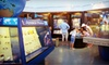 The Bailey-Matthews Shell Museum - West Gulf Drive: Admission to The Bailey-Matthews Shell Museum (Up to 60% Off). Four Options Available.
