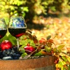 50% Off Wine Tasting at Roudon-Smith Winery