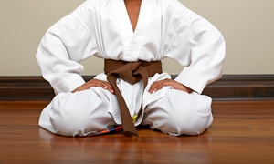 Dumlao's Academy of Martial Arts: Cardio Kickboxing, Brazilian Jiu Jitsu, or Karate Classes at Dumlao's Academy of Martial Arts (Up to 67% Off)