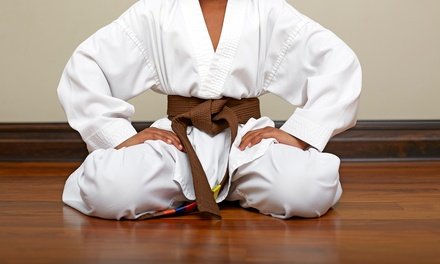 One or Two Months of Unlimited Martial Arts Classes at Pacific Kicks (Up to 75% Off)