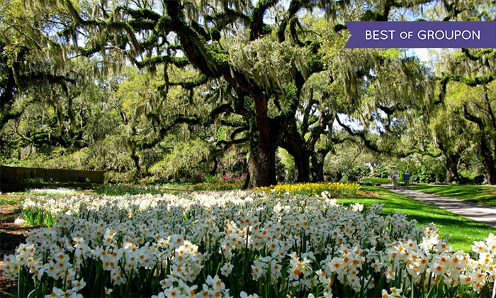 Lovely Brookgreen Gardens   Between Murrells Inlet And Pawleys Island: Admission  For Two, Four,