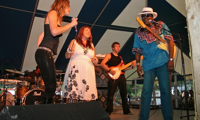 Big Bull Falls Blues Festival - Fern Island Parks: Big Bull Falls Blues Festival at Fern Island Park on August 14–15 (Up to 29% Off)