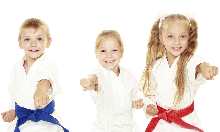 AmeriKick Karate - Andorra - Roxborough: $39 for One Month of Unlimited Karate Classes at AmeriKick Andorra (70% Off)