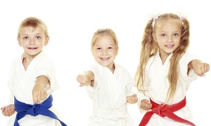AmeriKick Karate - Andorra: $39 for One Month of Unlimited Karate Classes at AmeriKick Andorra (70% Off)
