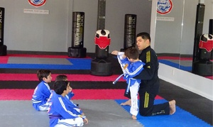 Modern Martial Arts: $74 for $130 Worth of Martial Arts — Modern Martial Arts