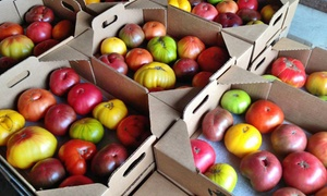 Bella Organic Farm and Winery: $21 for $40 Worth of Organic Heirloom Tomatoes from Bella Organic Farm and Winery