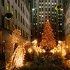 Up to 55% Off Holiday Lights Tour