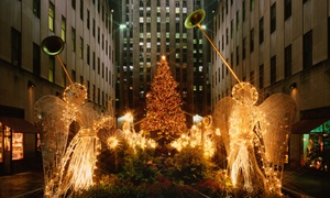 Ambassador Limousine: One Early-Bird or Late Night 21+ Only Byob Holiday Lights Bus Tour from Ambassador Limousine (Up to 46% Off).