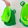 Wall-Mounted Potty Training Urinal