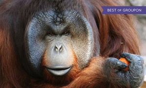 Jackson Zoo: $20 for Visit for Two Adults and Two Children to Jackson Zoo ($32 Value)