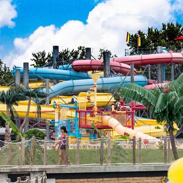 graphic regarding Printable Splash Lagoon Coupons called Beech Bend Enjoyment Park and Splash Lagoon