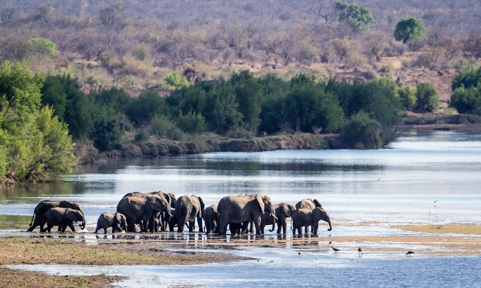 8 Day South Africa Tour With Air Amp Safari From Gate 1