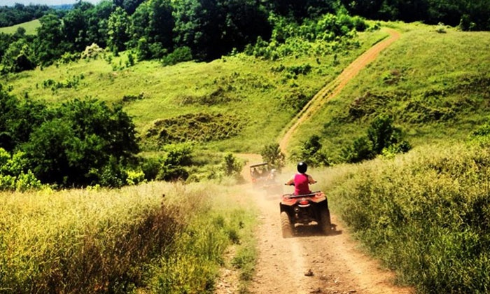 Four Wheelin' Expeditions Inc - 4: Guided Off-Road Half-Day ATV Rentals for Two or Four from Four Wheelin' Expeditions (Up to 58% Off)