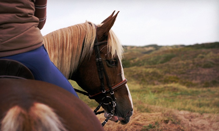 Spring Creek Farm - East End South: One or Two Semiprivate Horseback Lessons or a Summer-Camp Session at Spring Creek Farm in Pottstown (Up to 71% Off)