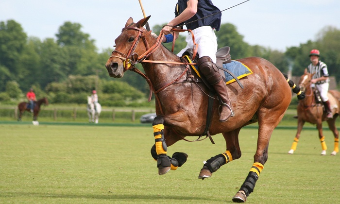 MWF Polo - Windsor: One or Three Individual Polo Lessons at MWF Polo (Up to 56% Off)
