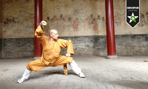 Centro Culturale Shaolin di Milano - Accademia di Scienze ed Arti Tradizionali della Cultura Shaolin: 12 o 24 lezioni di discipline orientali a scelta (sconto fino a 92%)