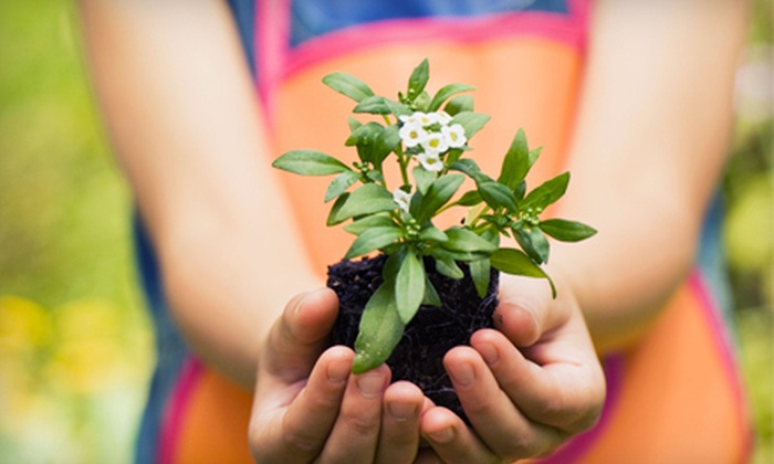 Lockwood Farms - Byram: $20 for $40 Worth of Plants and Gardening Supplies at Lockwood Farms