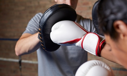 Kickboxing Classes with Gloves at Martial Arts America (Up to 81% Off). Three Options Available.