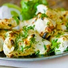 $30 or $40 Off Your Bill at Khyber Grill - Frontier Indian Cuisine
