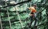 Tree to Tree Adventure Park - Between Portland and The Coast: $60 for an Aerial Adventure Course Package with Ziplining at Tree to Tree Adventure Park ($90 Value)
