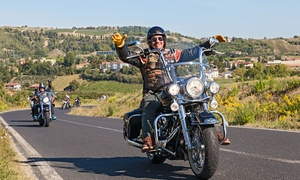 Amakhaya Harley Tours and Rentals Cape Town: Harley Davidson Rental for One with a Jacket and Helmet from R999 (Up to 61% Off)