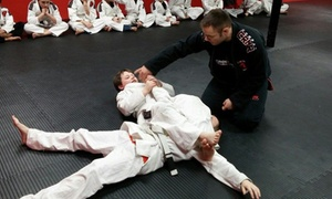 Crossover Brazilian Jiu Jitsu Academy: $10 for 10 Jiu Jitsu Classes — Crossover Brazilian Jiu Jitsu Academy