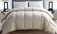 200 Thread-Coun Cotton Comforter