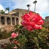 Mission San Juan Capistrano – 50% Off Visit