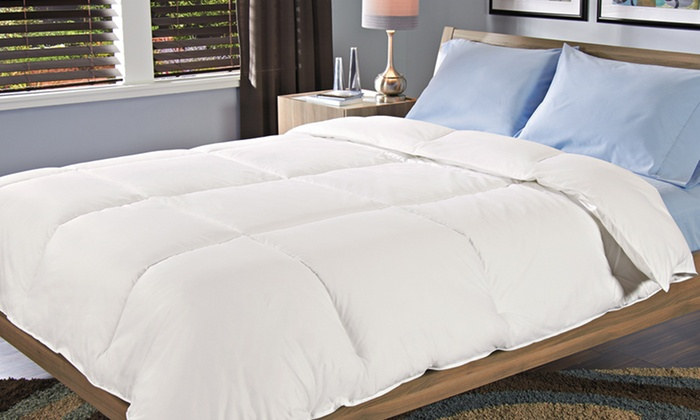 Hotel Madison Queen-Sized Egyptian-Cotton Down-Alternative Comforter: Hotel Madison Egyptian-Cotton Down-Alternative Comforter. Free Shipping and Returns.