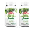 120-Count Pack of Herbal Zen Weight Loss Green Coffee Gummies