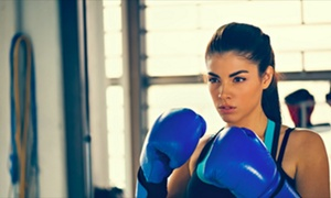 Malibu Boxing: $28 for $79 Worth of Boxing Lessons — Malibu Boxing