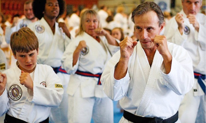 Asheville Sun Soo Tae Kwon Do - Asheville: One Month of Unlimited Martial-Arts Classes at Asheville Sun Soo Tae Kwon Do (79% Off). Three Options Available.