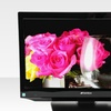 """$79.99 for a Sansui HDLCD185W 19"""" 720p LCD TV"""
