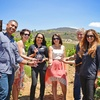 30% Off Vineyard Excursion with Wine and Grape Tasting