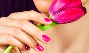 Lucia's Health & Beauty Salon: $14 for a Gel Manicure or Regular Pedicure at Lucia's Health & Beauty Salon (Up to $35 Value)