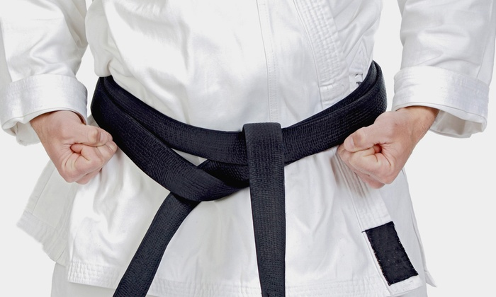 Toyoda Aikido Center - Wyoming: 10 or 20 Mixed Martial Arts Classes at Toyoda Aikido Center (60% Off)