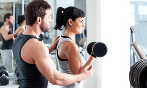 Apollis Health and Training: Gym Access + PT Sessions: Three ($14), Four ($21) or Six ($26) Weeks at Apollis Health and Training (Up to 510 Value)