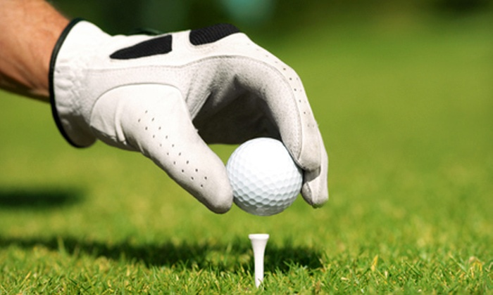 USA Lessons - Corpus Christi: $35 for One 60-Minute Private Golf Lesson from USA Lessons (Up to $95 Value)