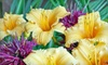 Woodland Gardens - Oregon: $25 for $50 Worth of Trees and Plants from Woodland Gardens