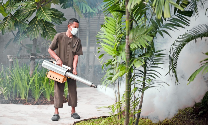 Simple Pest Control - Hampton Roads: $60 for $230 Worth of Pest-Control Services — Simple Pest Control