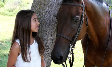 One or Three Private Horseback-Riding Lessons at Majic Stables (Up to 67% Off)