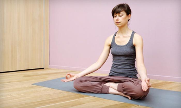 River Yoga - Lahaska: 5, 10, or 20 Classes at River Yoga in Lahaska