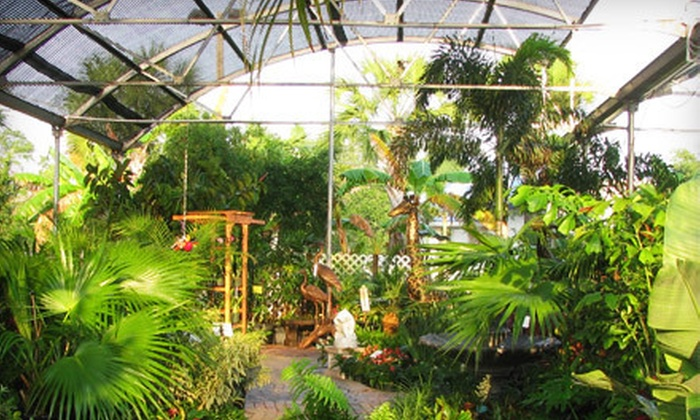 Wizzard Lake Nursery - North Naples: $25 for $50 Worth of Plants and Gardening Supplies at Wizzard Lake Nursery